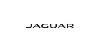 jaguar_99df826141_8100-d496340bb32f0fd0c393fe42c9fa19eb.jpg